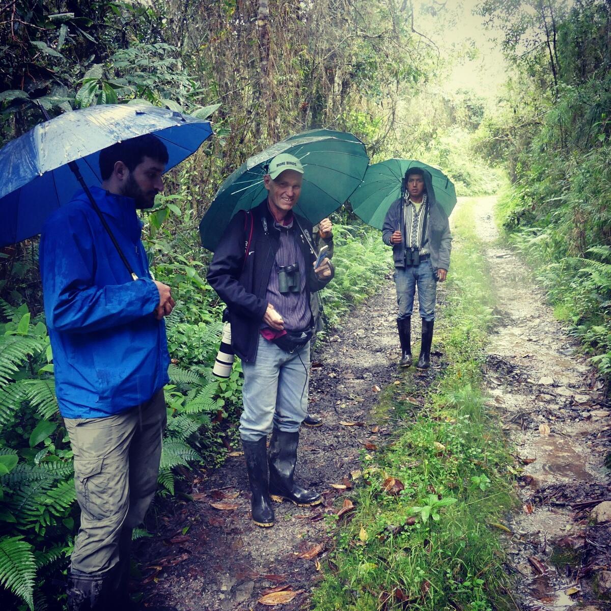 Birding with umbrellas at Ulcumano Ecolodge. Noah Strycker