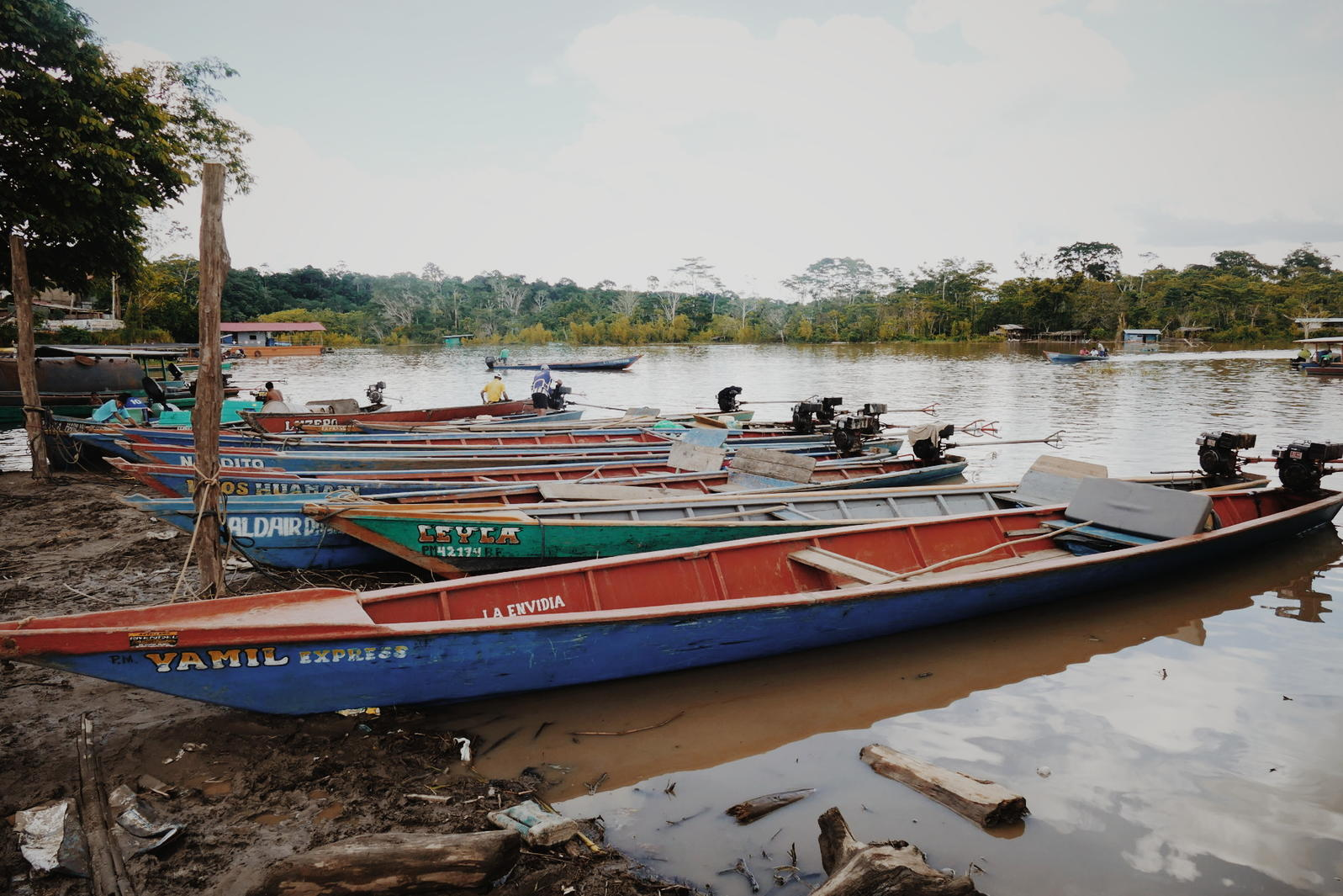 Colorful water taxis lined up at the edge of the Madre de Dios River in Puerto Maldonado, Peru. Noah Strycker