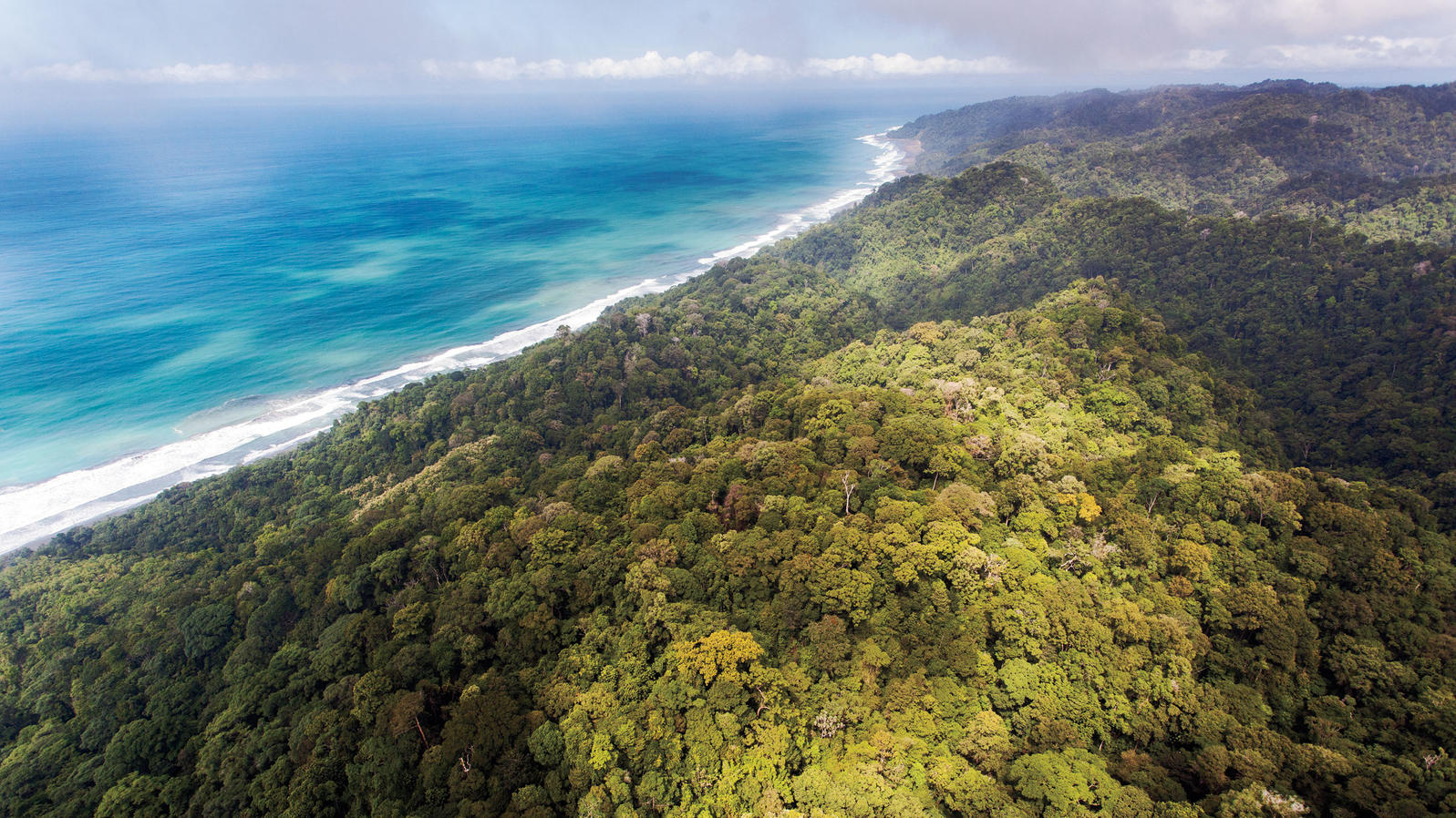 Photograph by Emmanuel Rondeau. The Corcovado National Park in Costa Rica, 425km2 of pristine rainforest. Photograph by Emmanuel Rondeau.