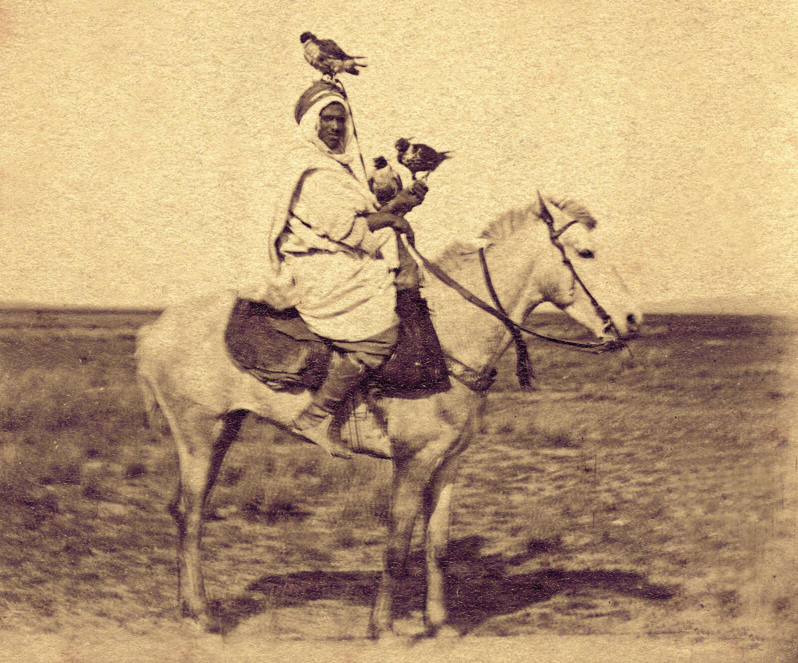 An Arab falconer accompanied by his trained hunters, circa 1890. Adoc-photos/Art Resource, NY
