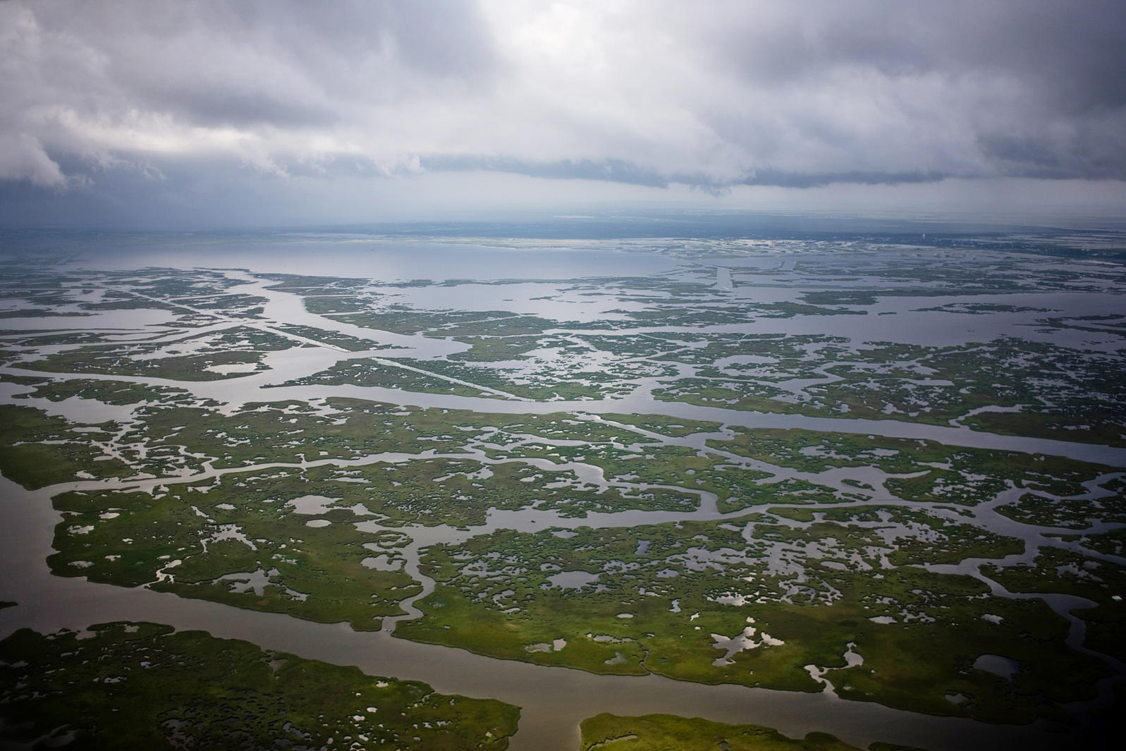 The cost of industrial development is clear in these degraded wetlands near Grand Isle, Louisiana. Matthew B. Slaby