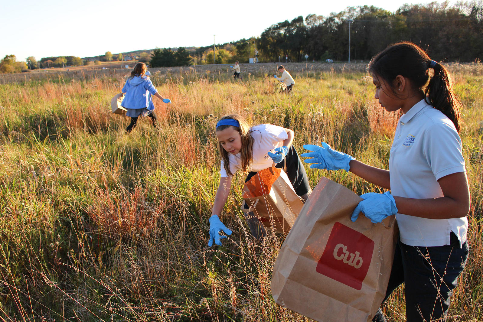 St. Croix Preparatory School students gather native plant seeds for a prairie restoration in Minnesota. Ashley J. Peters