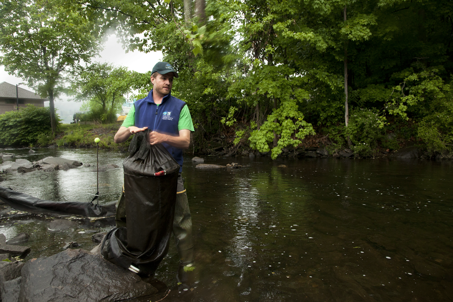 Science educator Chris Bowser is helping make it easier for eels to breach dams that stand in their way as they migrate through the Hudson River watershed. Photograph by Natasha Otrakji