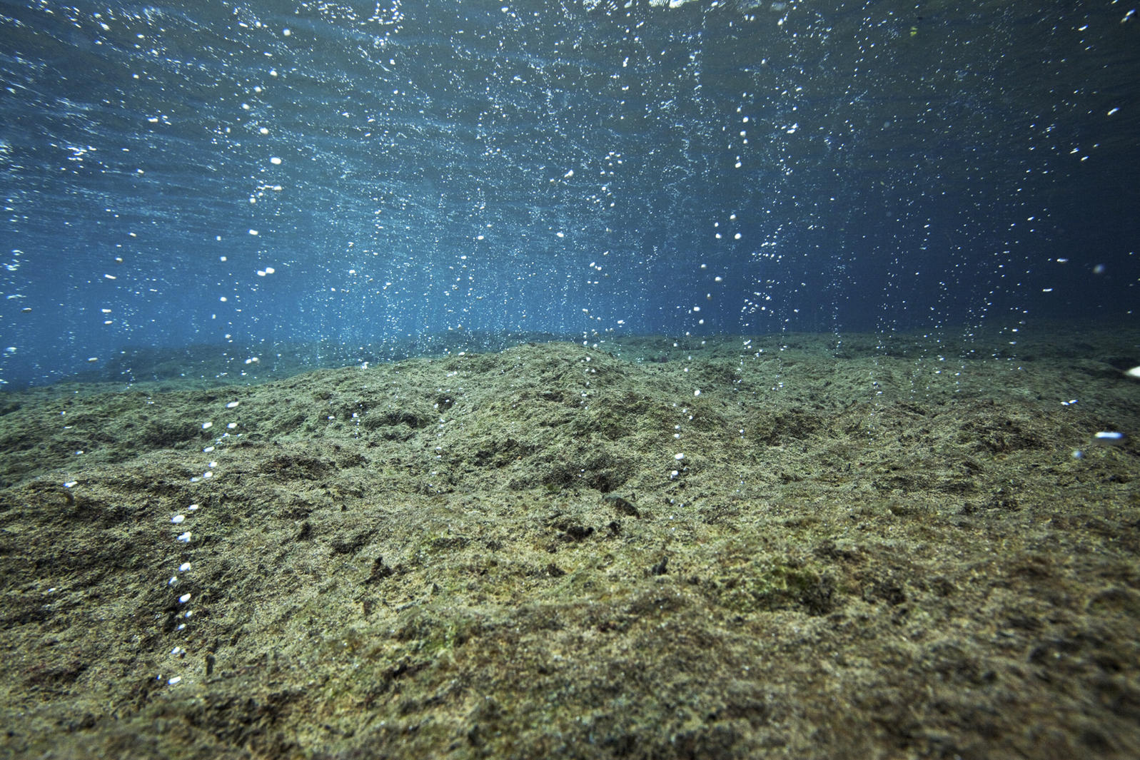 CO2 bubbling from seafloor vents acidifies the water. Ischia, Italy. Credit: David Liittschwager/National Geographic Society/Corbis
