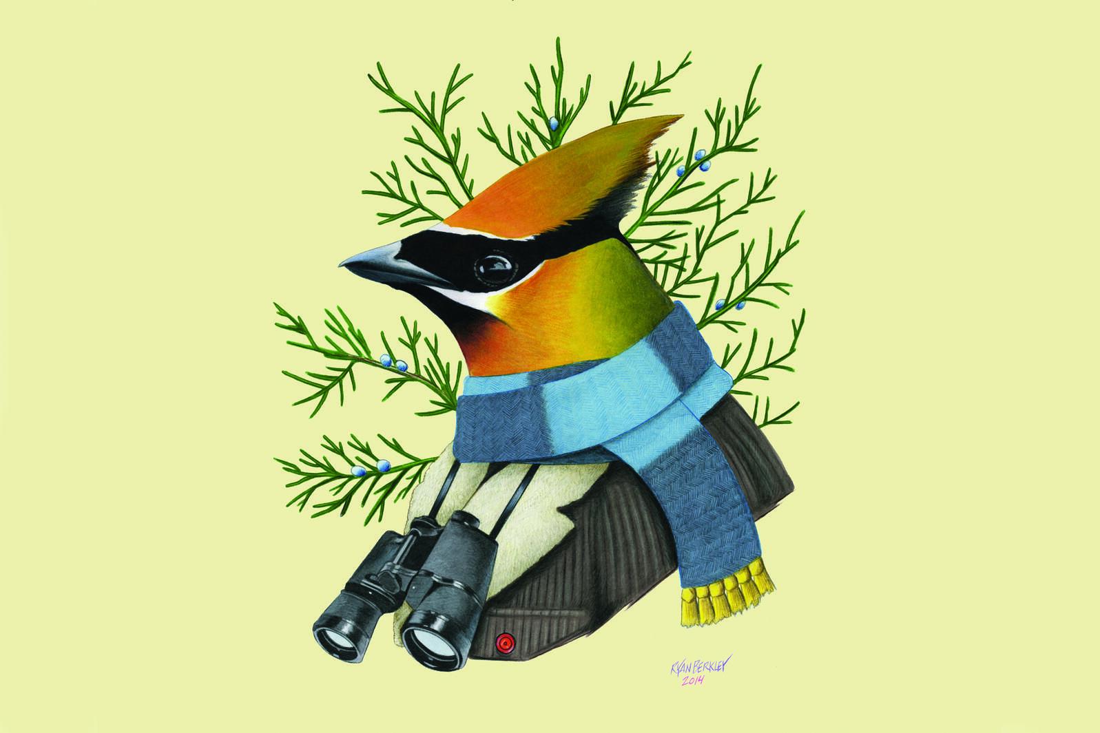 Illustration: Ryan Berkley