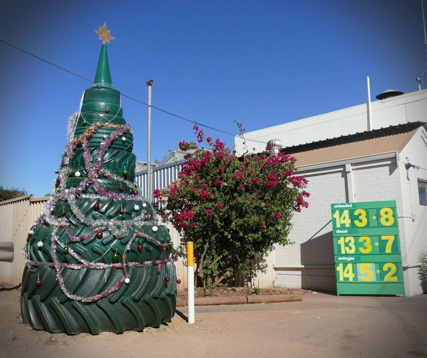 A Christmas tree, outback style. Noah Strycker