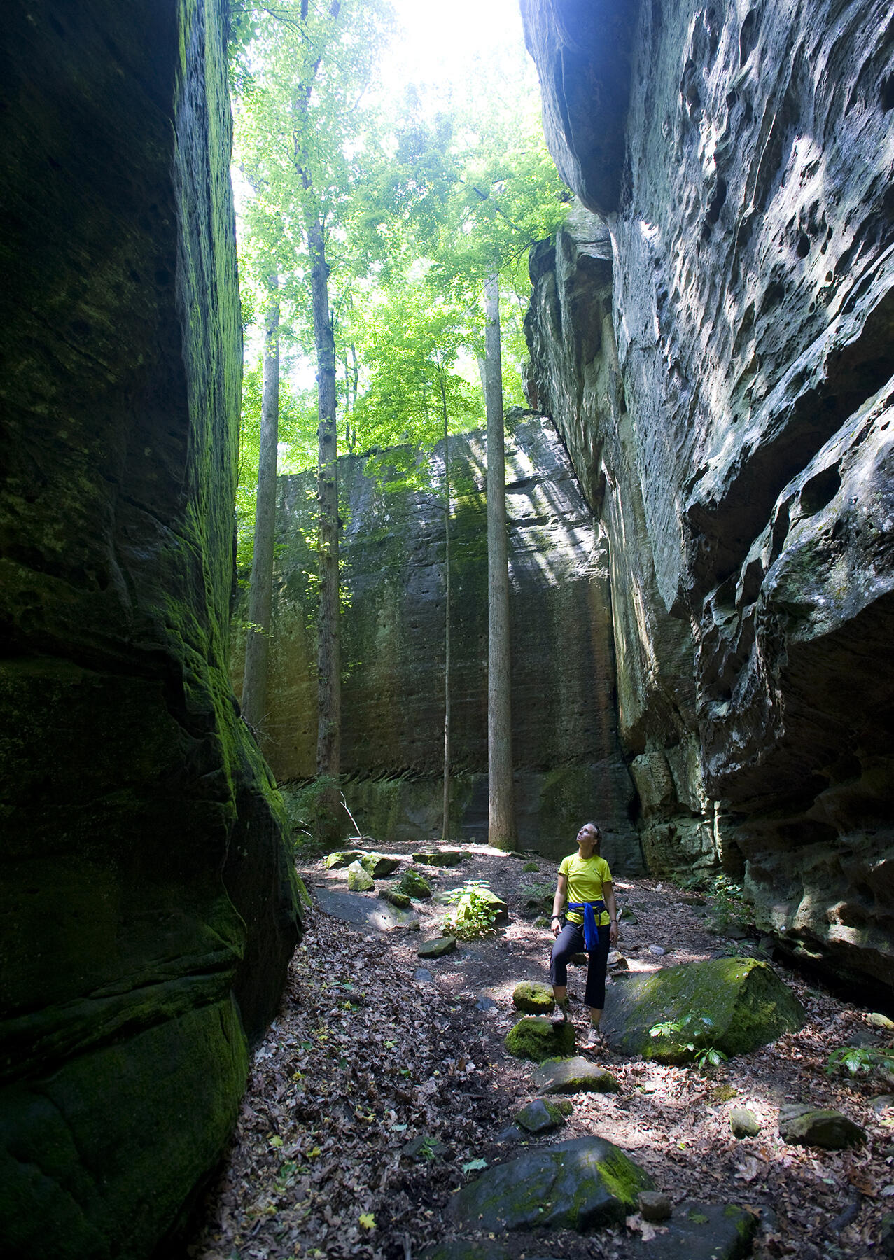 Shawnee National Forest, Southern Illinois. Bennett Barthelemy/Tandemstock.com