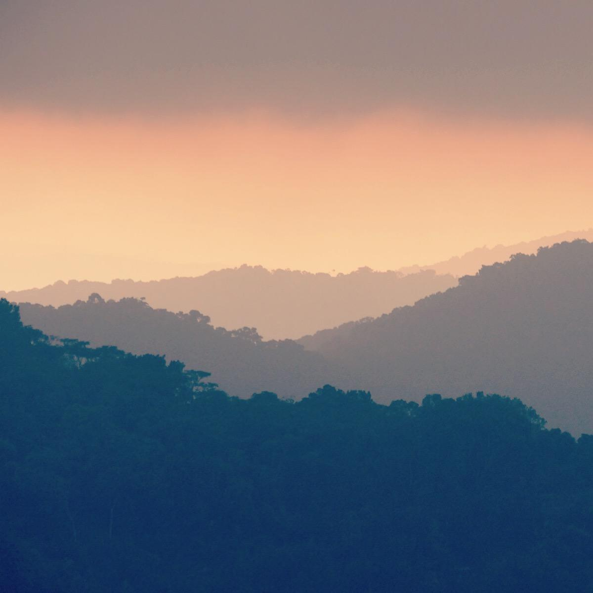 Late evening light over Ruhija, Uganda. Noah Strycker
