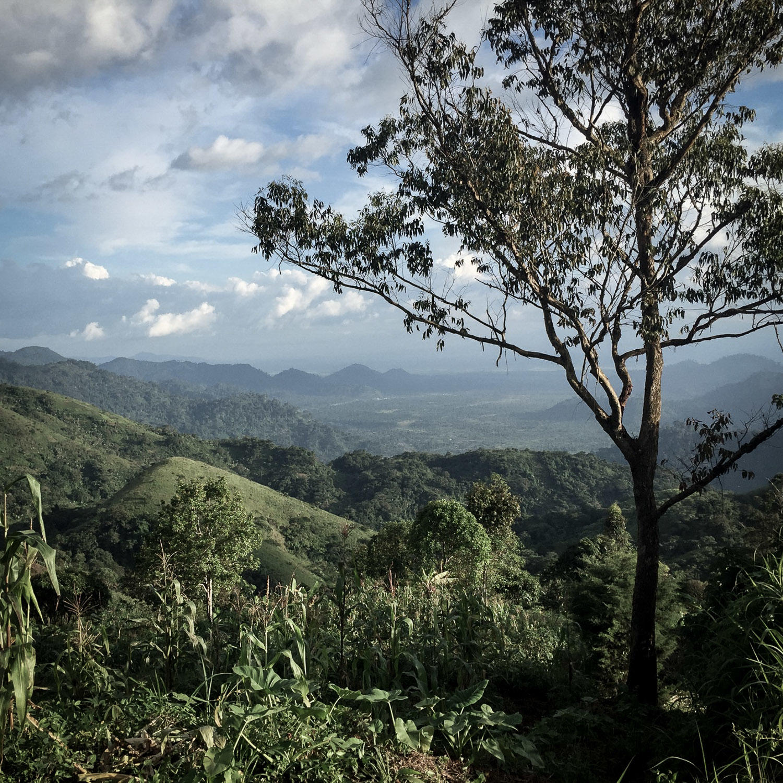 A roadside overlook shows the highlands of northwest Cameroon. Noah Strycker