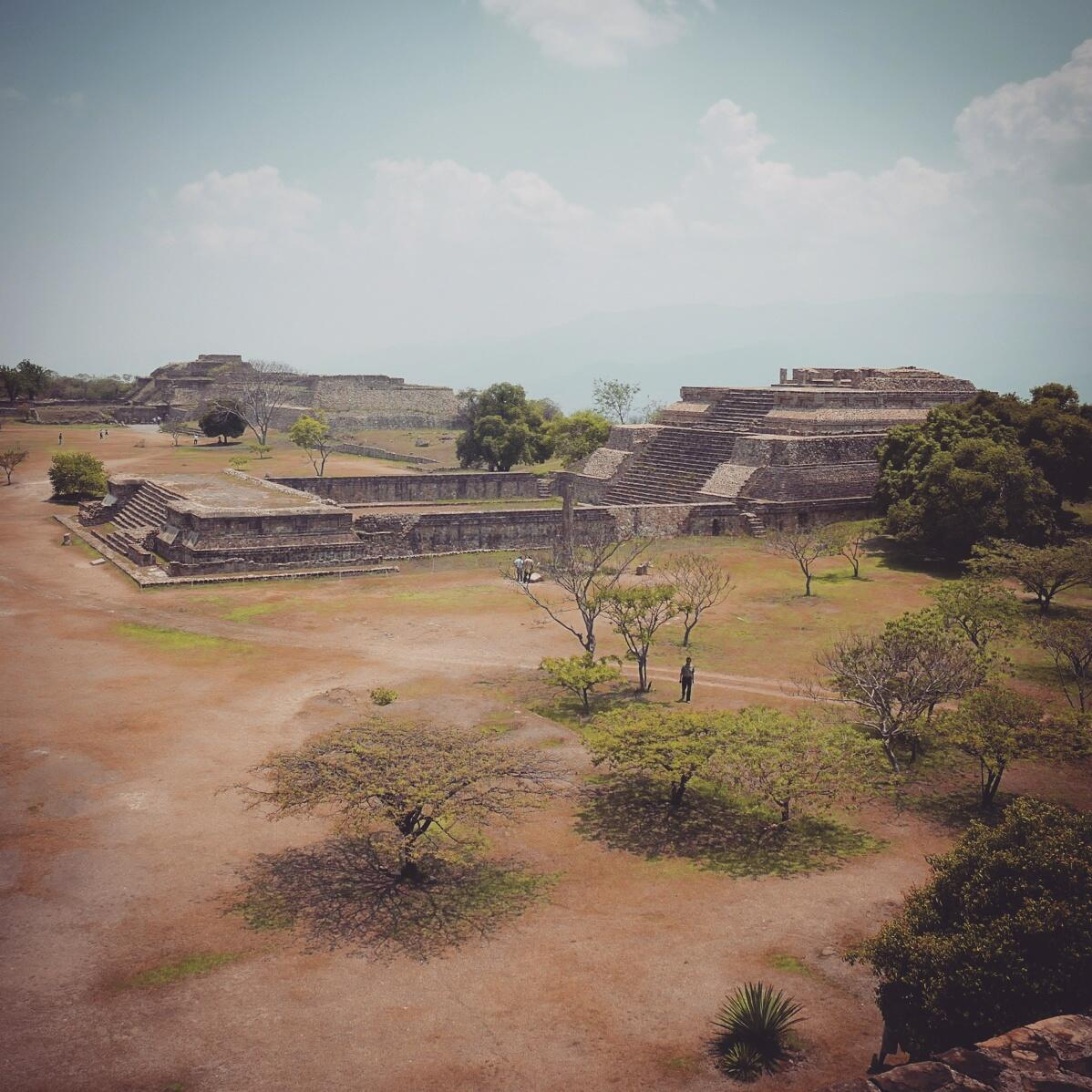 The ruins at Monte Alban are spectacular, historic, and a good birding spot. Noah Strycker