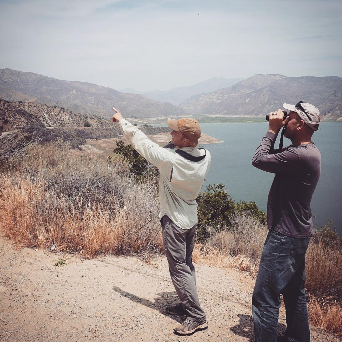 Noah and Dave Bell spot a California Condor at Pairu Dam. Noah Strycker