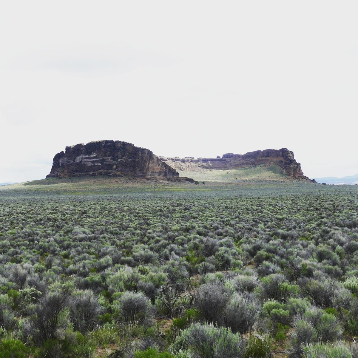 Eastern Oregon is full of sagebrush and rimrock (seen here at Fort Rock, where Noah saw his yearly Sagebrush Sparrows and Sage Thrashers). Noah Strycker