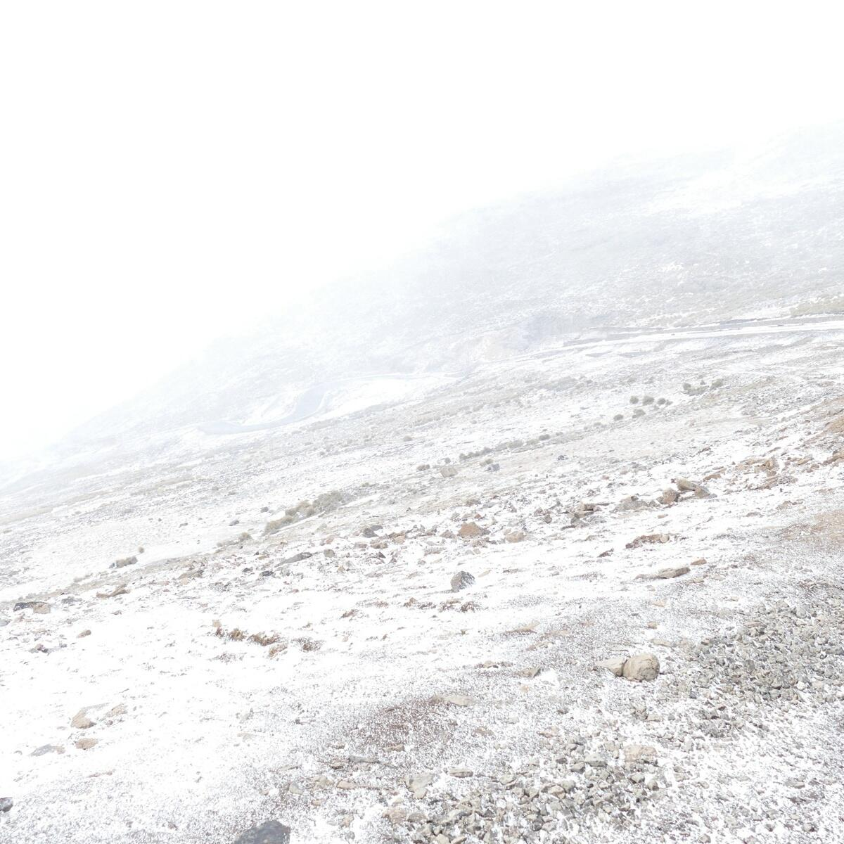 A snow squall sets in on Black Mountain. Noah Strycker