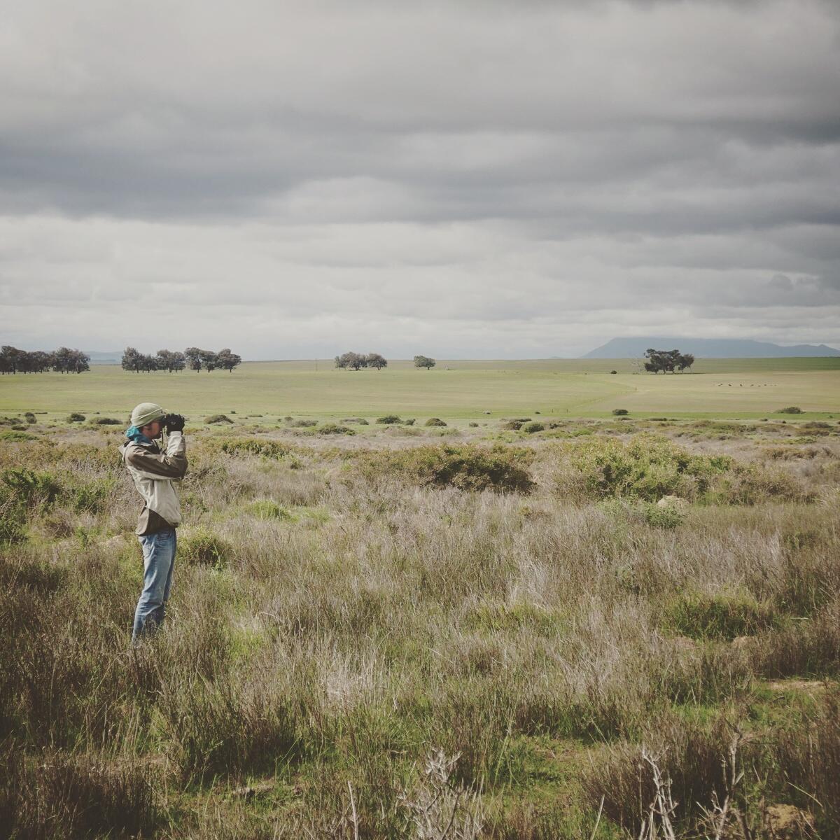 Ethan Kistler scans for larks in a grassland near West Coast National Park. Noah Strycker