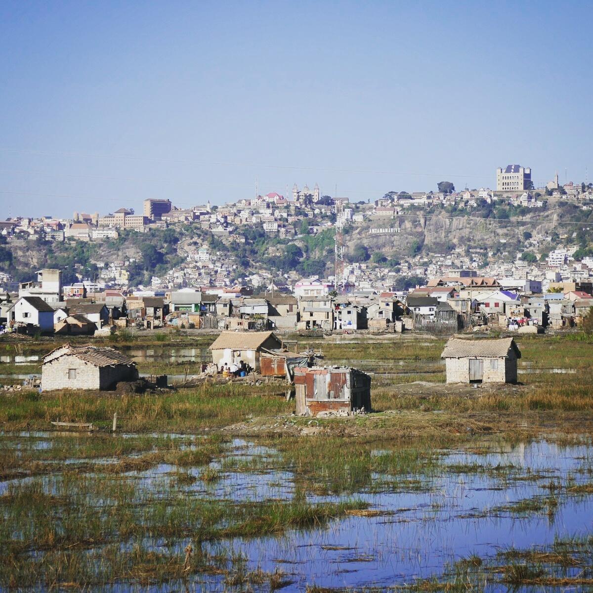 A marsh on the outskirts of Antananarivo provides good habitat for herons and egrets. Noah Strycker