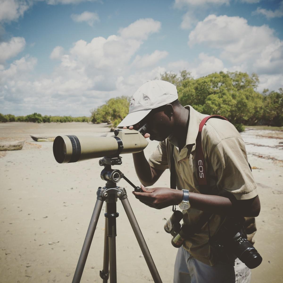 Joe Aengwo looks for birds along the Kenyan coast before flying back to Nairobi. Noah Strycker