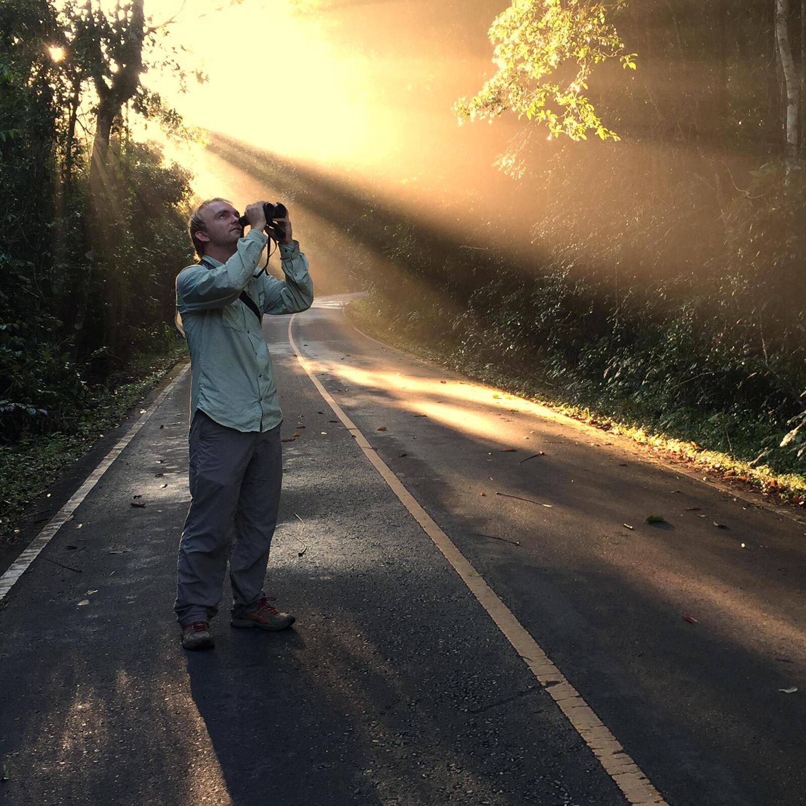 Noah looks for birds at Khao Yai National Park. Panuwat Sasirat