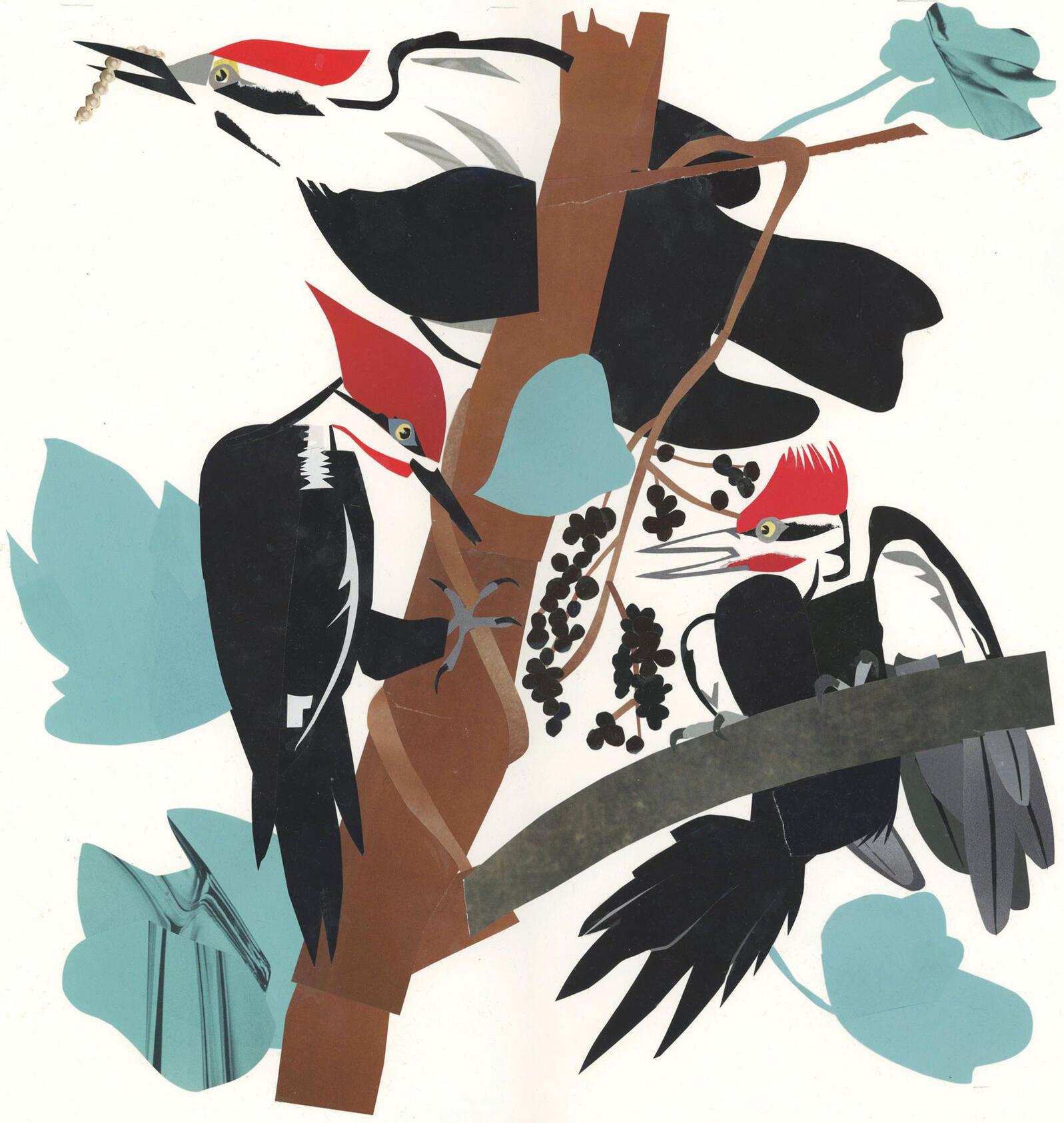 Illustration: Stephen Kroninger