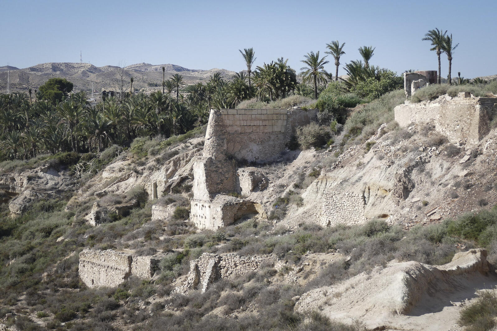 The landscape on Spain's central Mediterranean Coast is hot and dry, more African than European. Noah Strycker