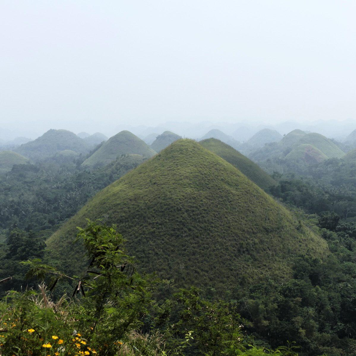 The Chocolate Hills cover central Bohol. Noah Strycker