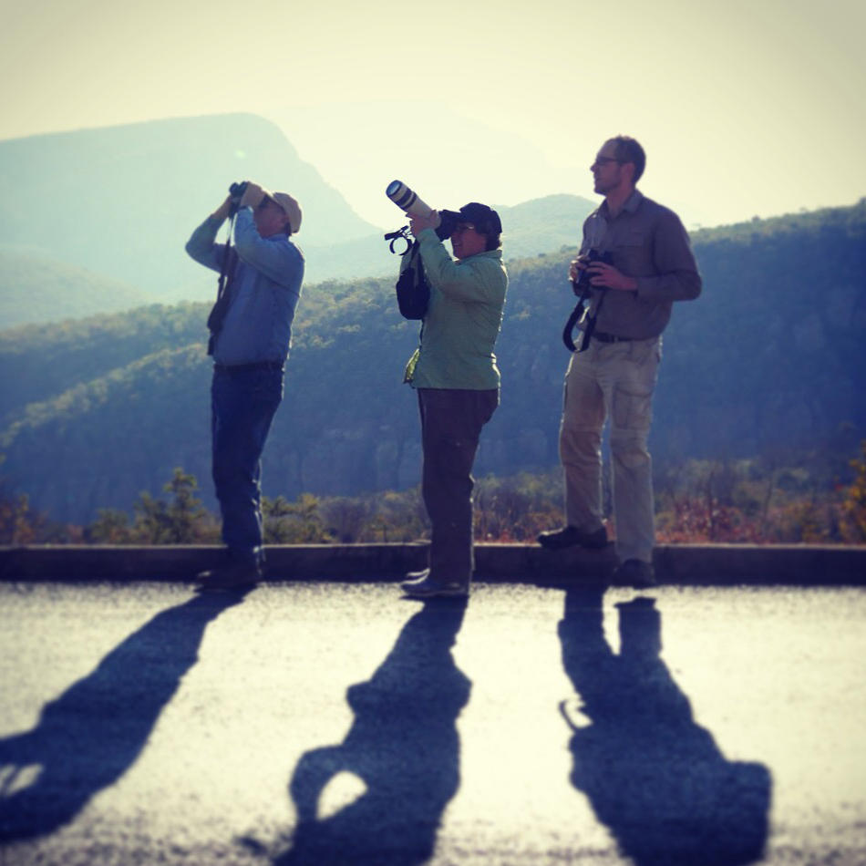 The group looks for eagles on the way to Kruger National Park. Noah Strycker
