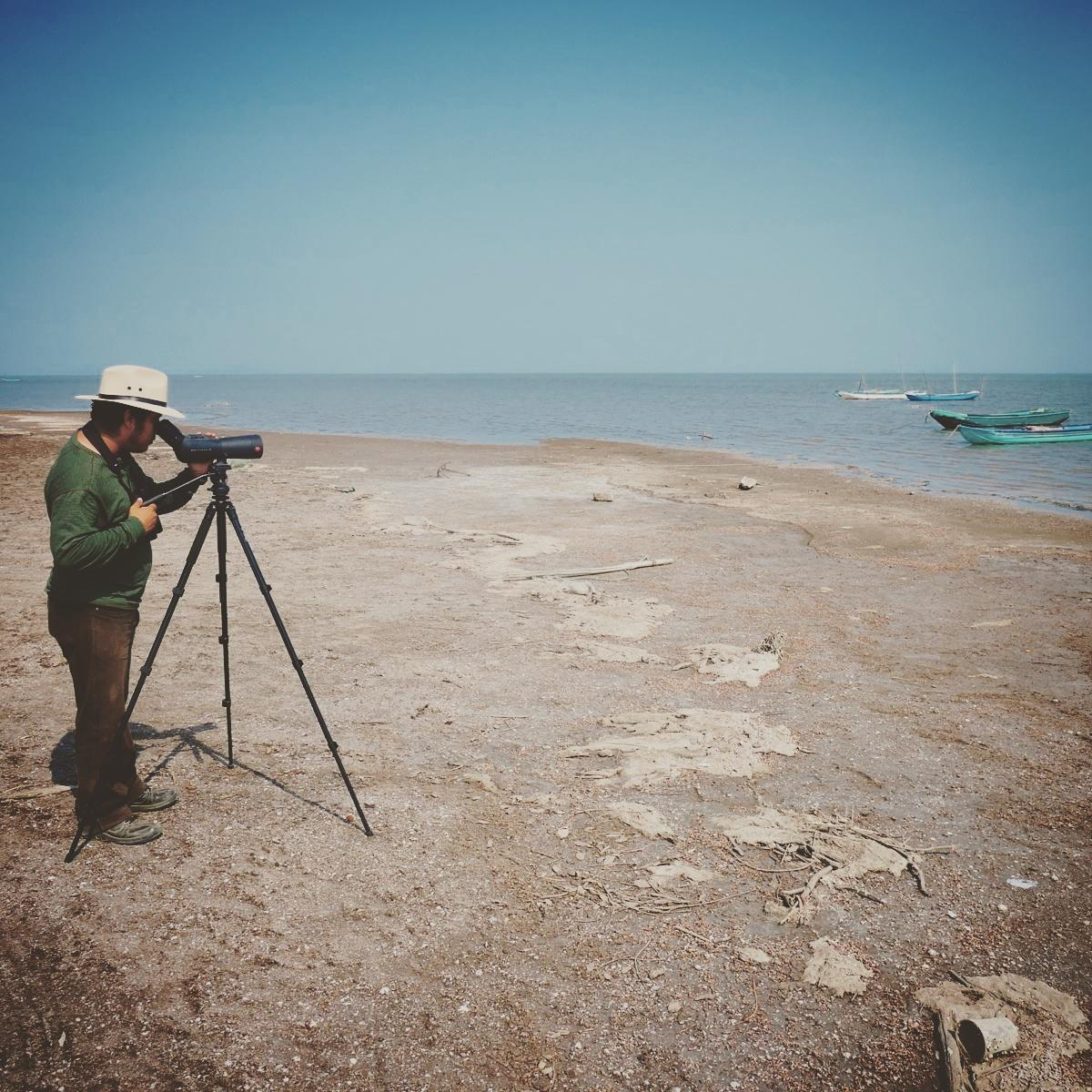 Eric scans for shorebirds at the Mar Muerto. Noah Strycker