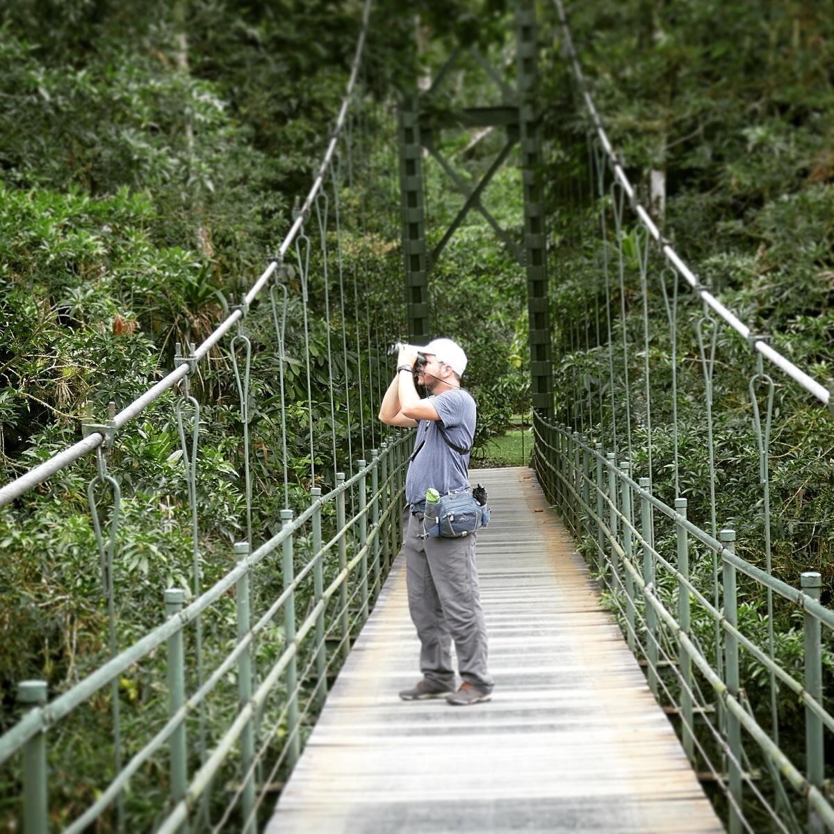 Johan scans for birds from a hanging bridge at La Selva. Noah Strycker