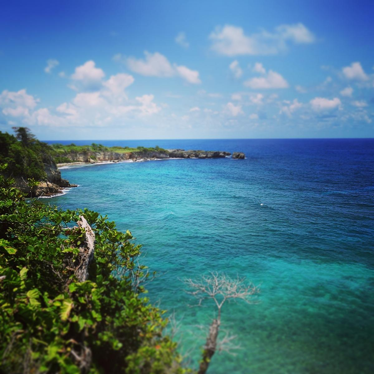 A scenic overlook along Jamaica's coastline is a good stakeout for White-tailed Tropicbirds. Noah Strycker