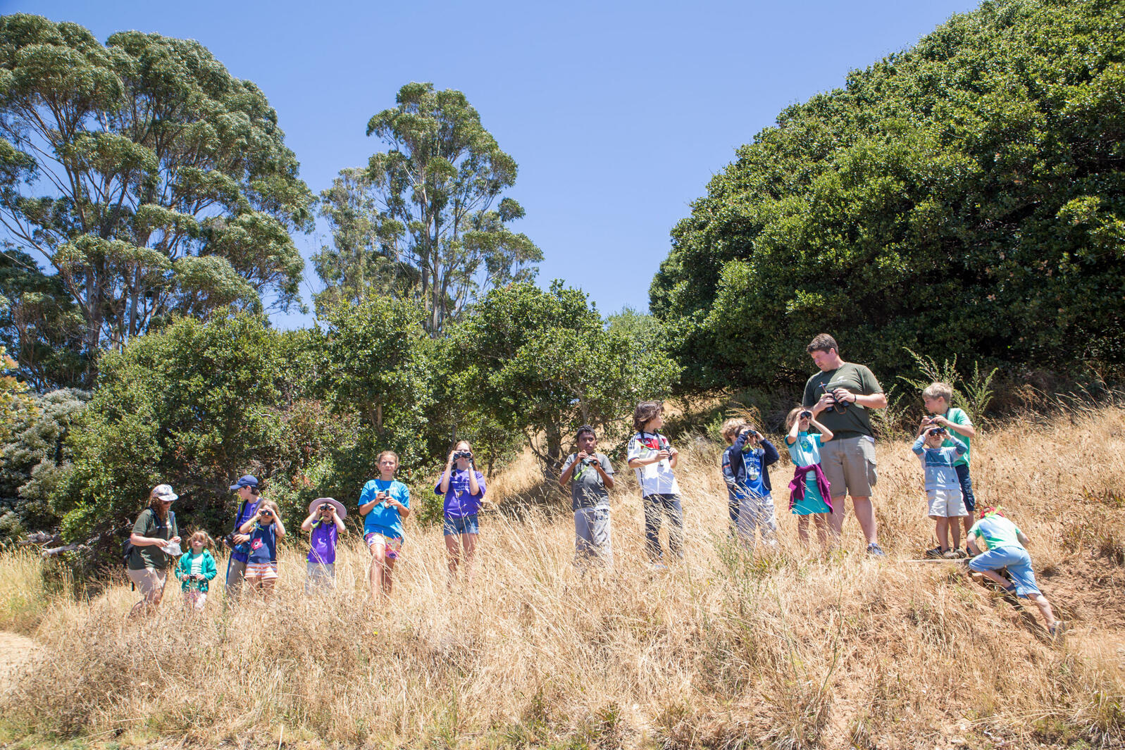 Introducing kids to birds (as the experts at the Richardson Bay Audubon Center in San Francisco are doing here) is a fun first step. Giving them the tools to ID birds in an important second step. Camilla Cerea/Audubon