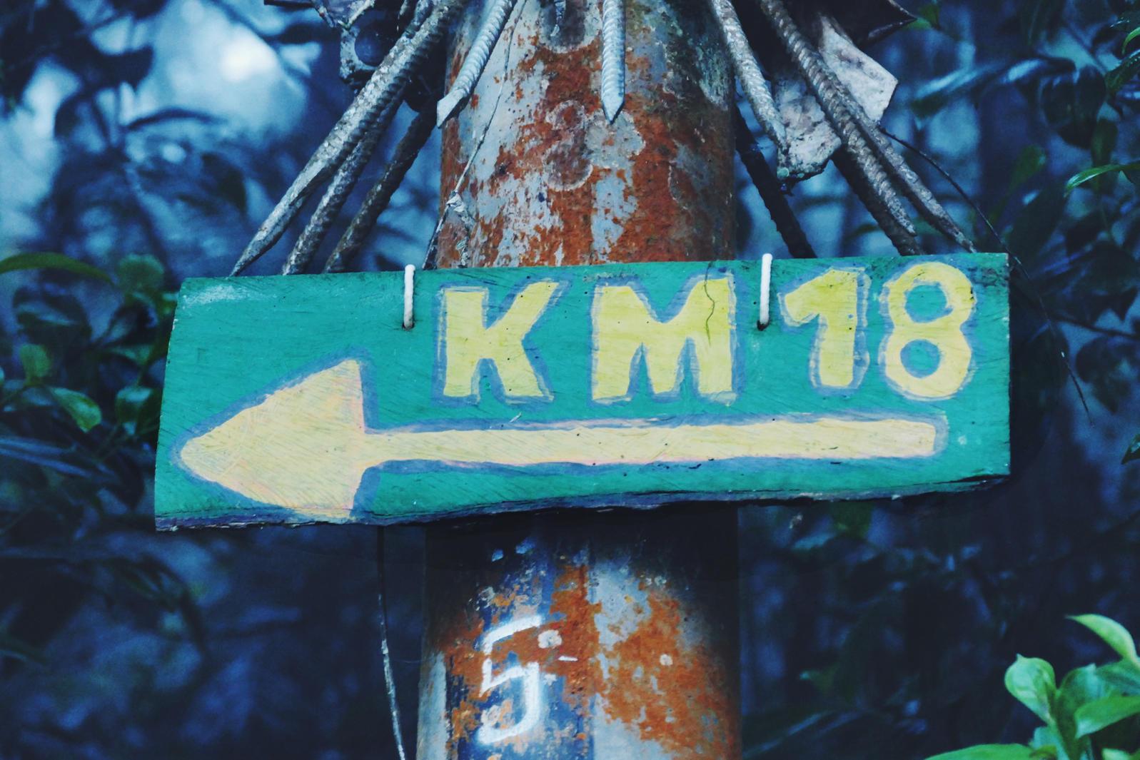 """""""Kilometer 18"""" is one of the best birding spots near Cali, Colombia. Noah Strycker"""