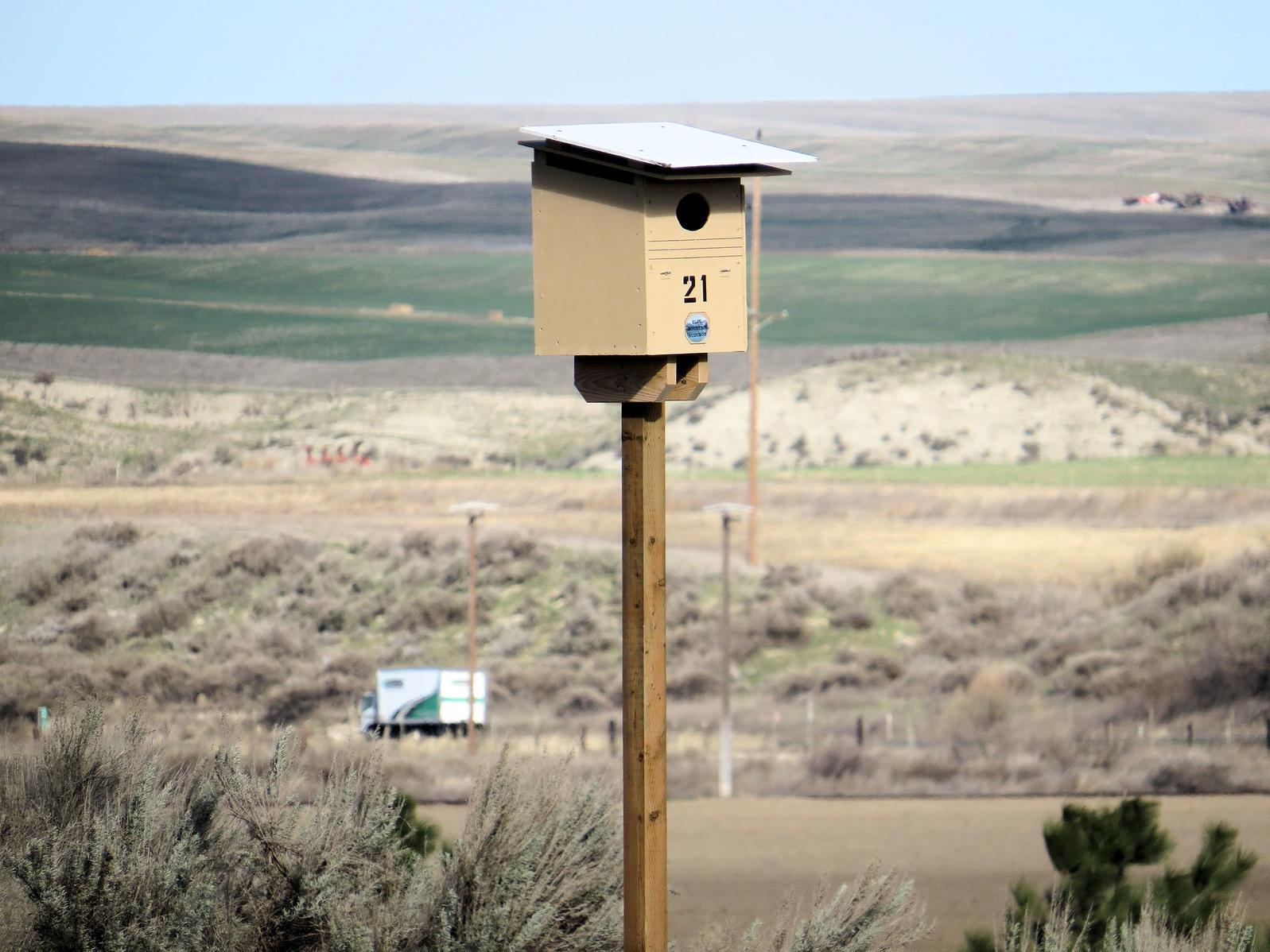 Washington State Penitentiary inmates are helping Blue Mountain Audubon Society build nest boxes for Barn Owls in Walla Walla, Washington. G. Jameson