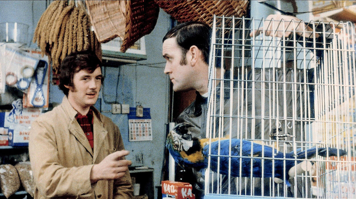 Michael Palin and John Cleese in the 1971 Monty Python dead parrot sketch. AF Archive/Alamy