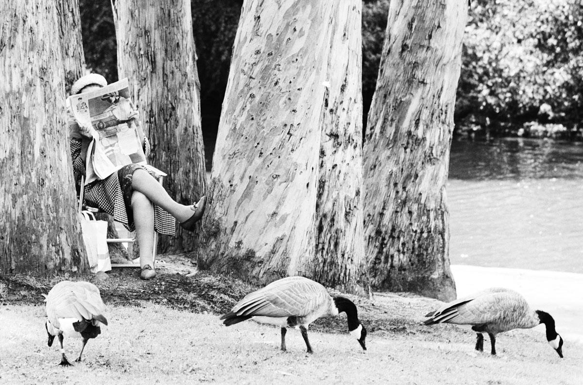 Perfect example of letting birds be. Dennis Stock/Magnum Photos