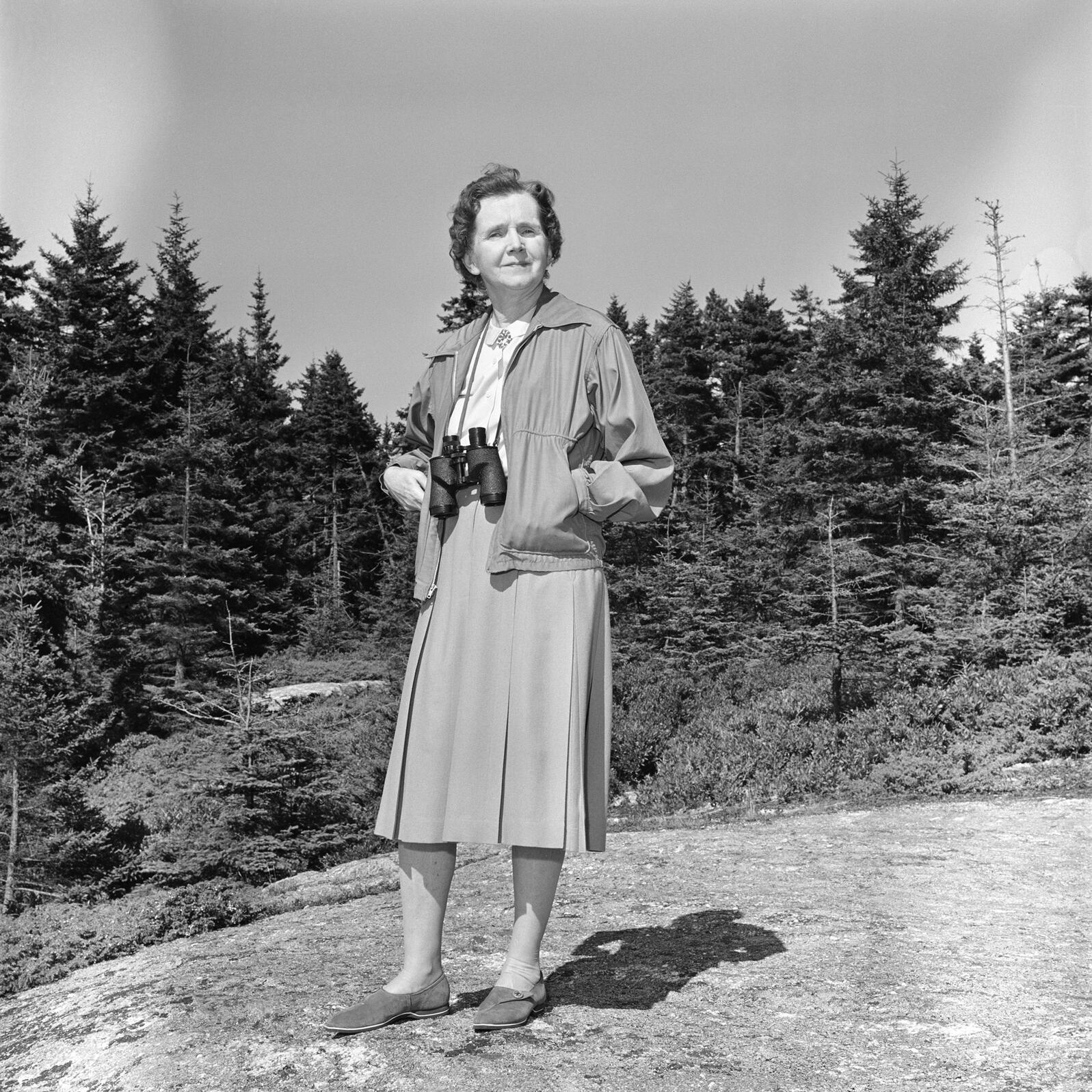 Rachel Carson was a staunch defender and lover of birds. CBS Photo Archive/Getty