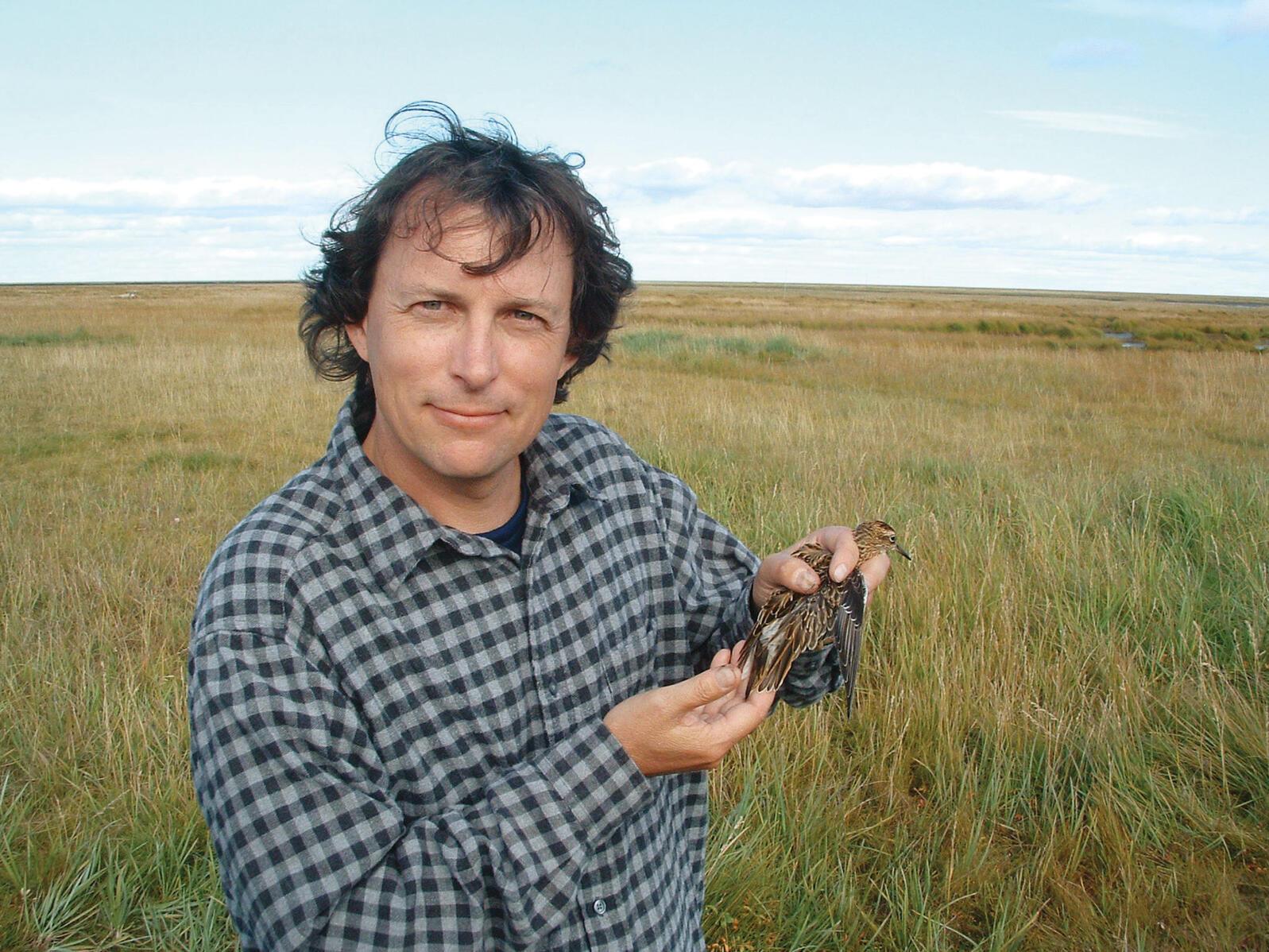 Nils Warnock holding a Sharp-tailed Sandpiper. Åke Lindström