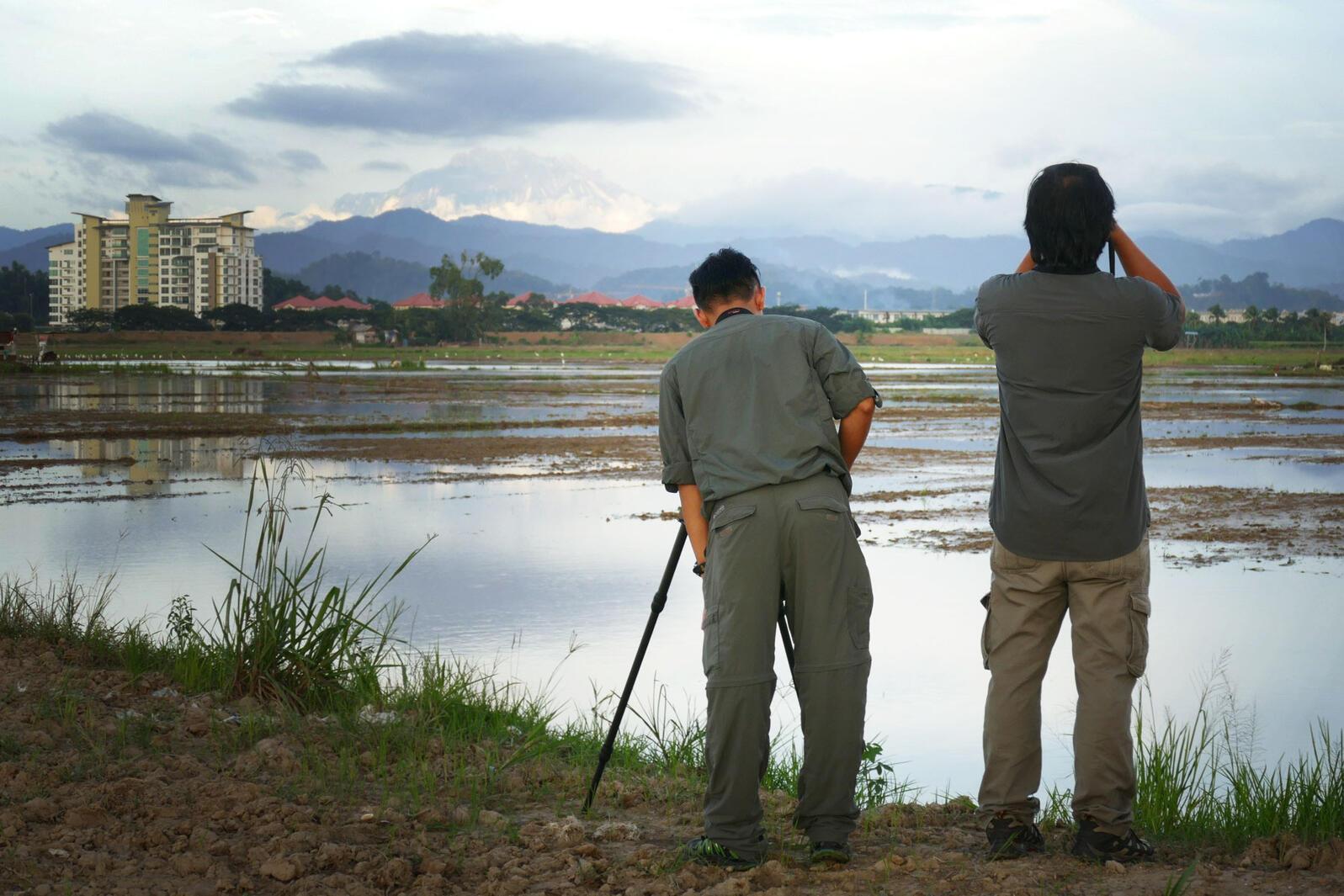 Birding on the outskirts of Kota Kinabalu. Noah Strycker