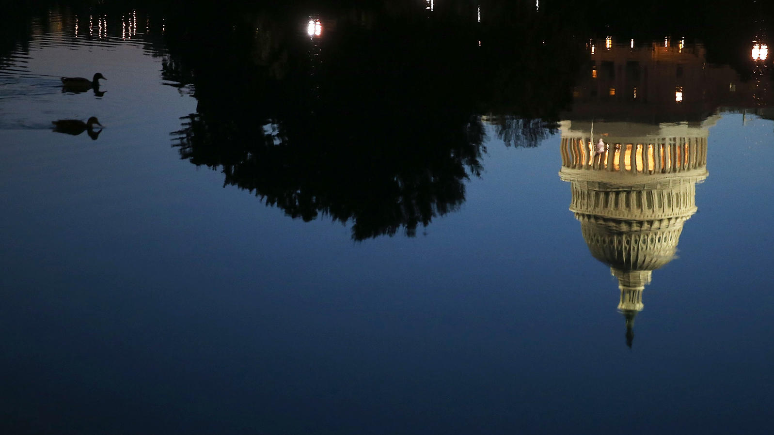 The Capitol Building, reflected in the water. Two Mallards swim nearby. Mark Wilson/Getty Images