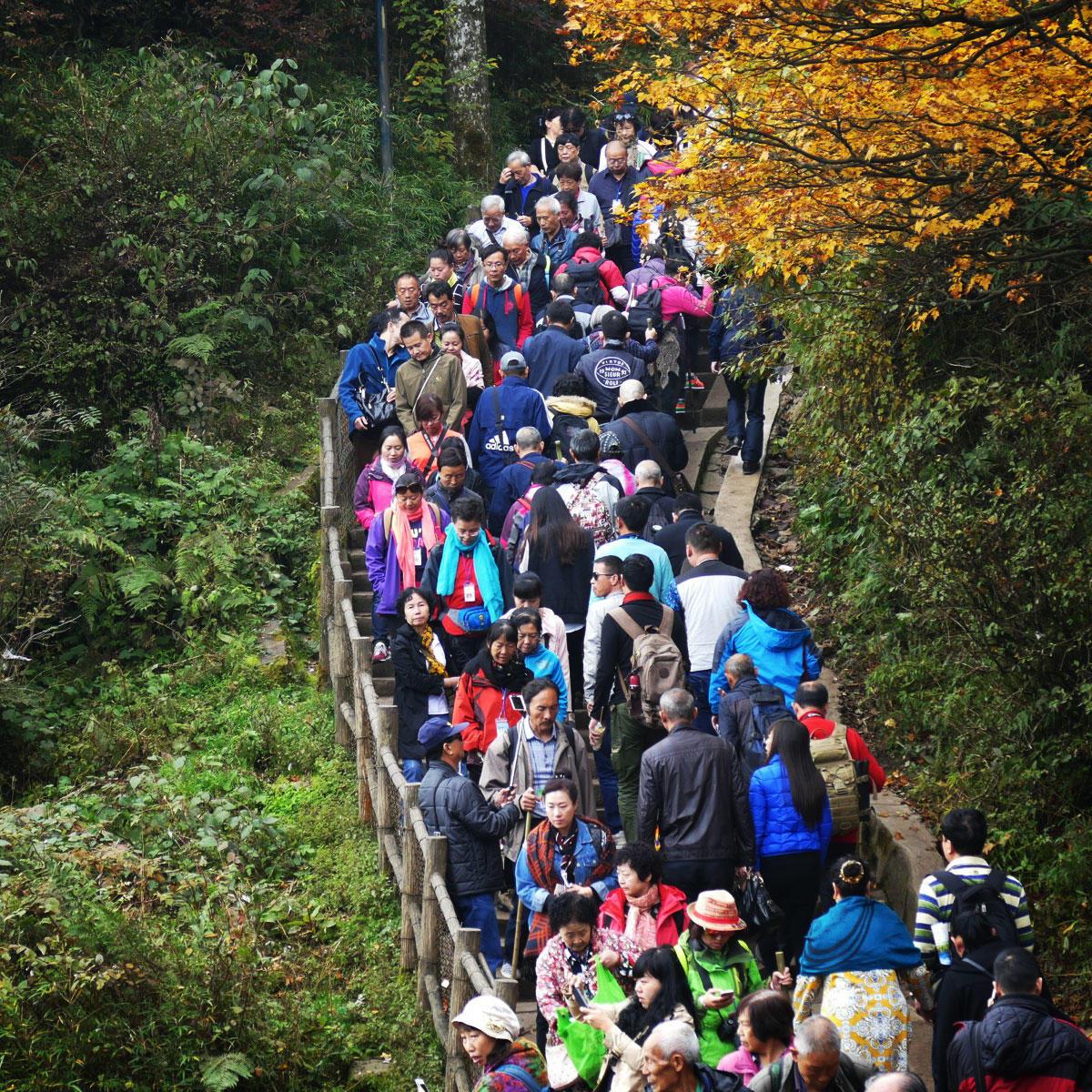 Tourists climb a final set of stairs to reach Mount Emei's Golden Summit. Noah Strycker