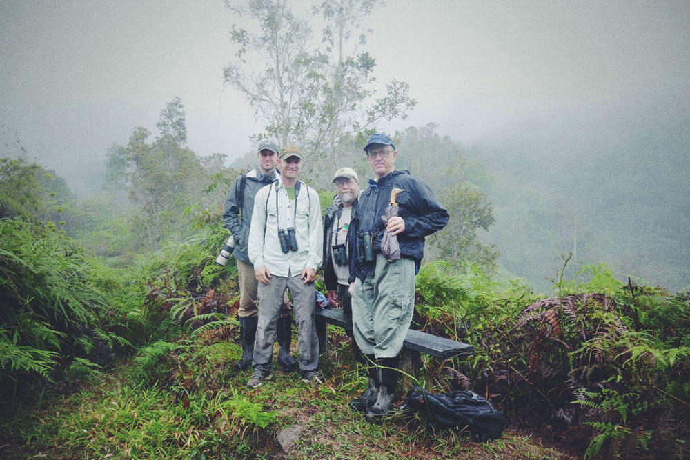 Ryan, Noah, Jim, and Bruce take a break at a misty overlook in the Cerulean Warbler Reserve, Colombia. Noah Strycker