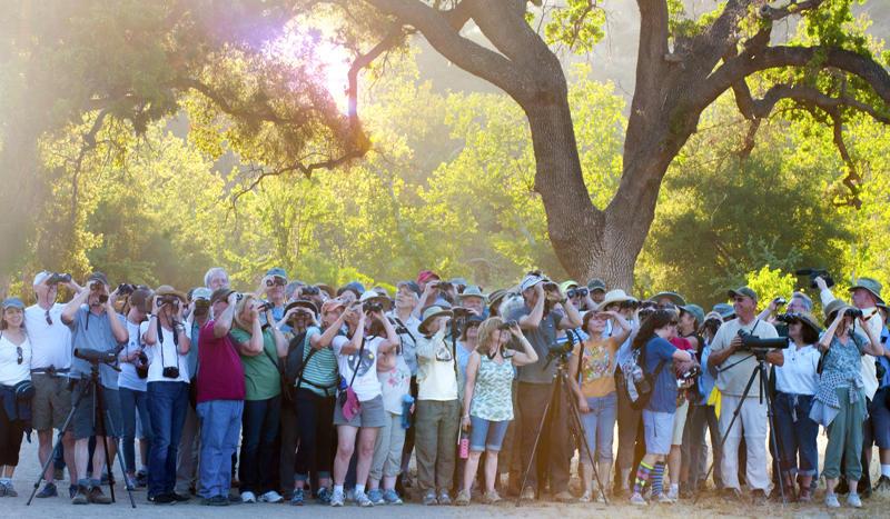 Huge crowd at Malibu Canyon State Park. Scott Logan