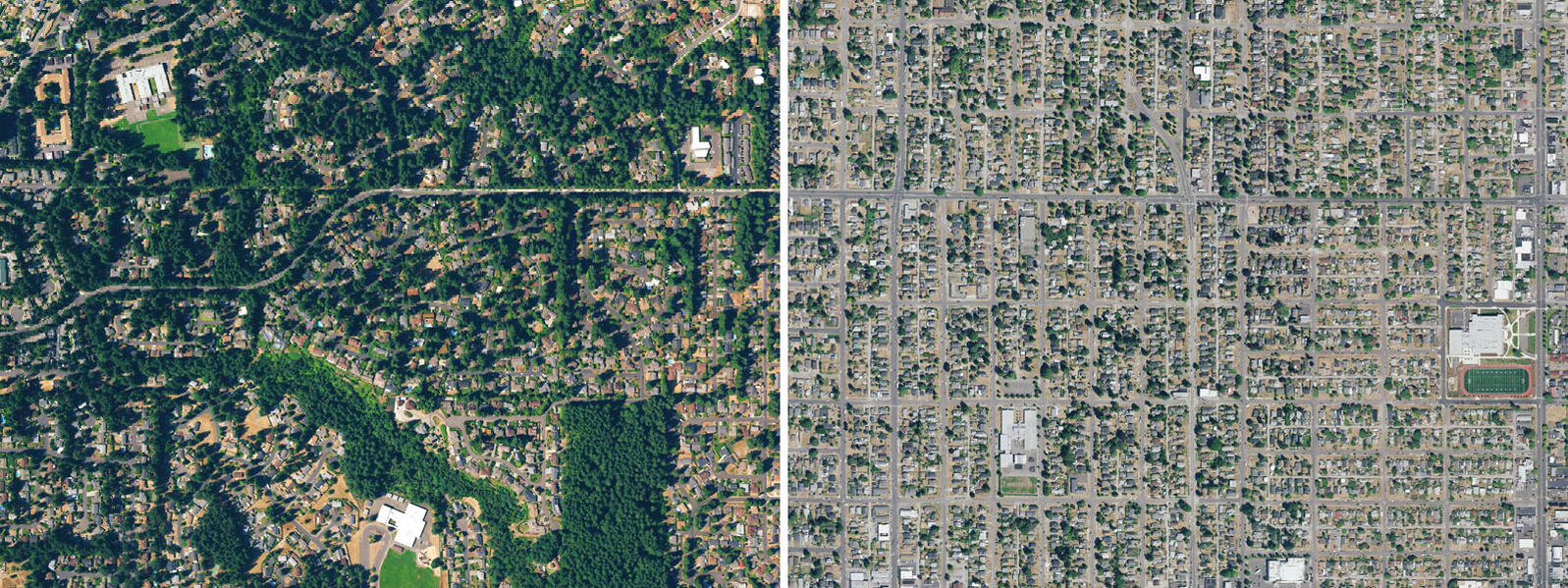Aerial view showing the difference in tree cover between University Place, Washington (left) and Tacoma, Washington (right). Photos: Megan Kitagawa/UW Tacoma