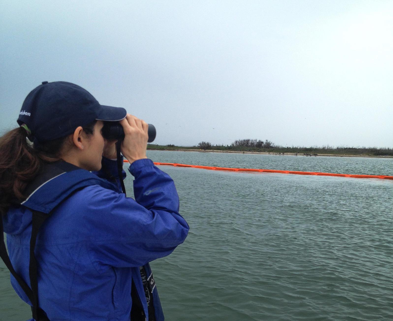 Audubon Texas Director of Conservation Iliana Peña surveying Sundown Island (Chester Island) in Matagorda Bay. -Sundown Island photographs taken March, 27th, 2014.   Photograph by Peggy Wilkinson