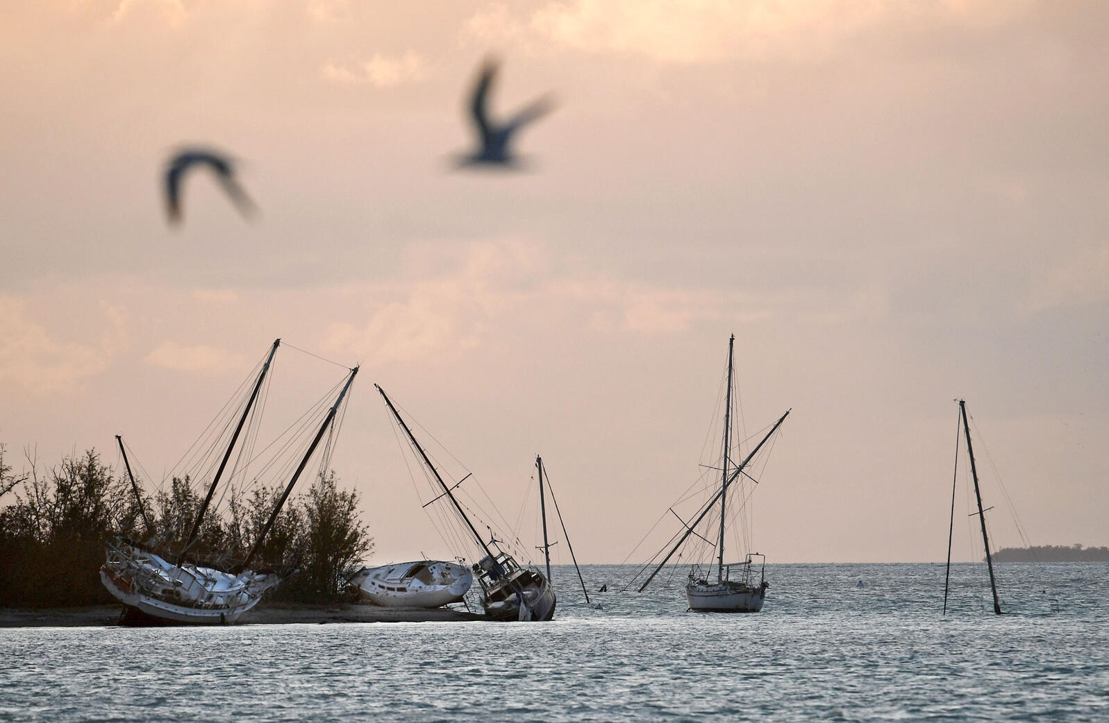 Sunken and beached sailboats after Hurricane Irma passed through the Florida Keys. Matt McClain/The Washington Post/AP