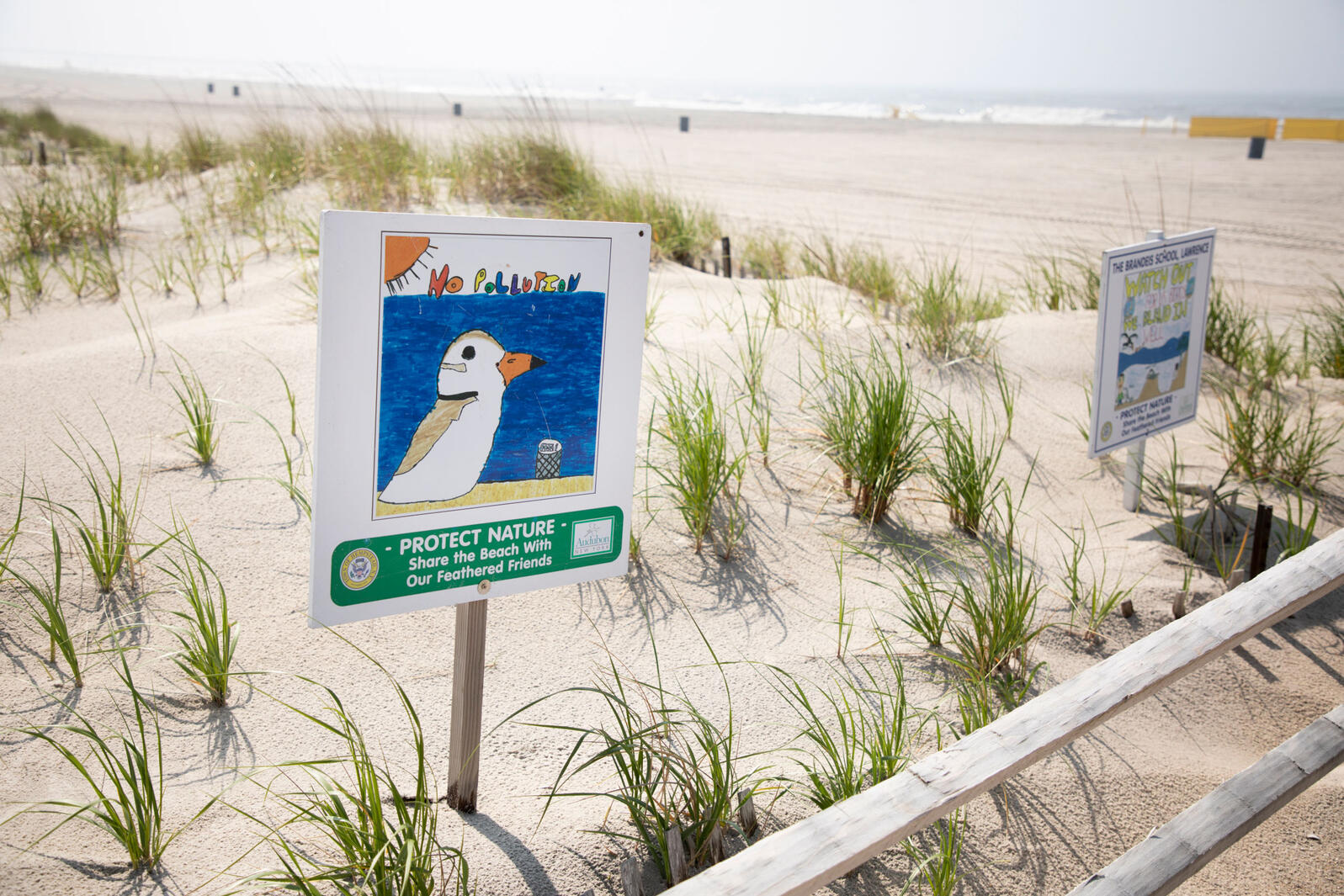 Bird-friendly signs along the beach at Point Lookout Town Park in Point Lookout, NY. Luke Franke/Audubon