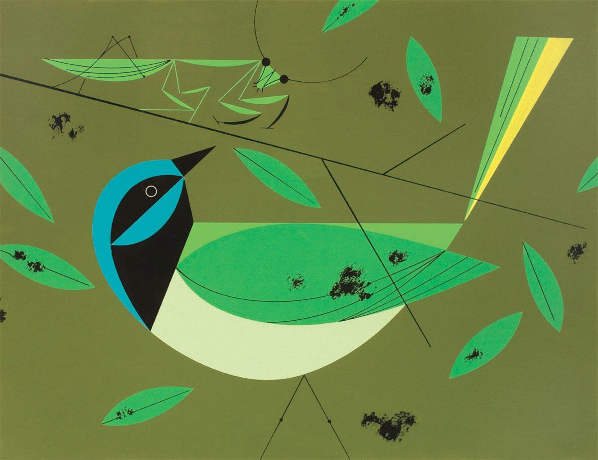 Green Jay. Illustration: Charley Harper