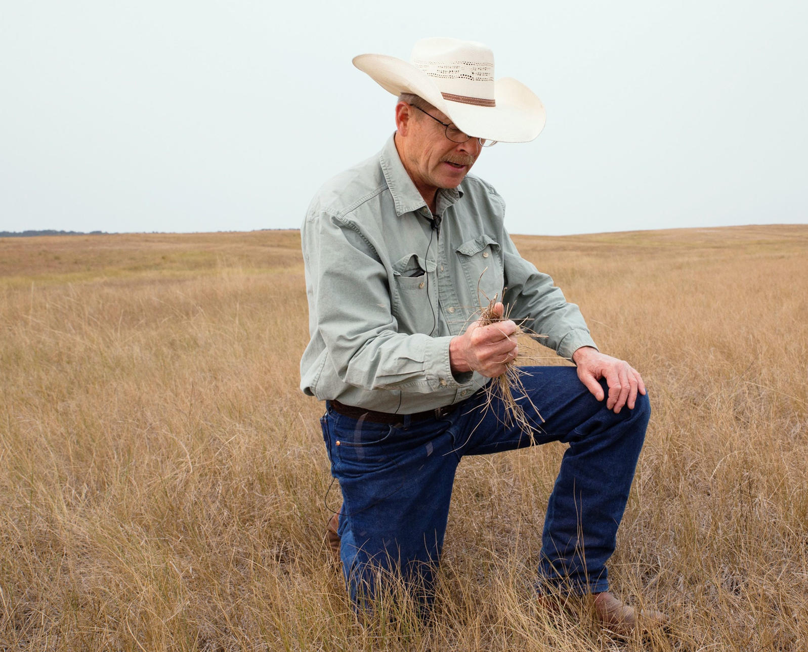 Dan Rasmussen, 33 Ranch, South Dakota, 22,000 acres enrolled in the Audubon Conservation Ranching Initiative. Mike Fernandez/Audubon
