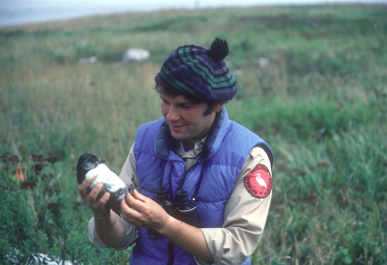 Steve Kress holds a puffin fledgling on Eastern Egg Rock. Roughly 1979. Richard Podolsky