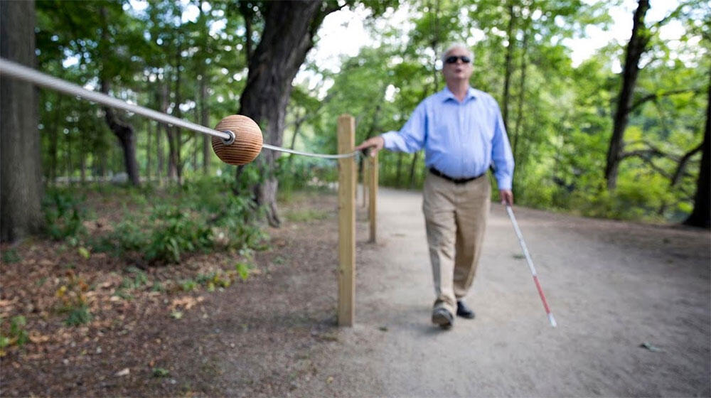 A photograph of bird guide and instructor Jerry Berrier using strategically placed rope fencing to navigate a trail in Watertown, Massachusetts. Robin Lubbock/WBUR