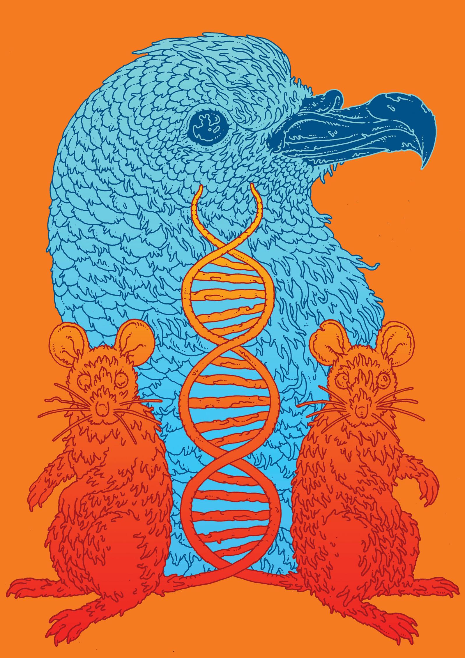 Illustration: Eric Nyquist