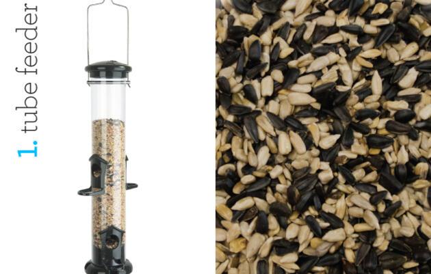 Audubon Guide to Winter Bird-Feeding